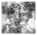 Haruko - Live EP